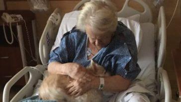 Vovó recebeu visita especial enquanto estava internada (Foto: Reprodução/ Twitter)