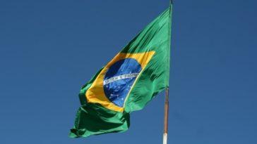 feedclub brasil
